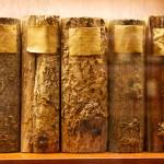 Original books made by Carol Schildbach