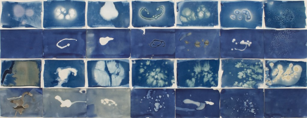 28 ways, Cyanotype and mixed media on watercolor paper, ©2014 Caroline Roberts